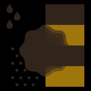 Ambiente dello Scorzone Estivo