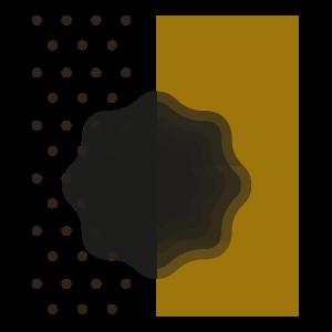 Ambiente del Tartufo Nero
